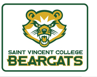 Iron On Patch Bearcat Logo Saint Vincent College Bookstore